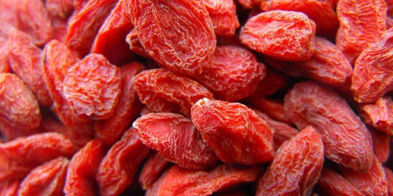Fruits séchés en gros Baies de goji